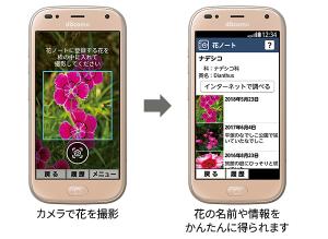 らくらくスマートフォンme 花ノート