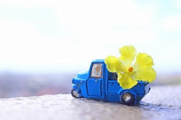スマホ 送料 有料 配送しているトラック