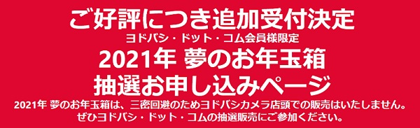 ヨドバシカメラ2021 iPad 福袋